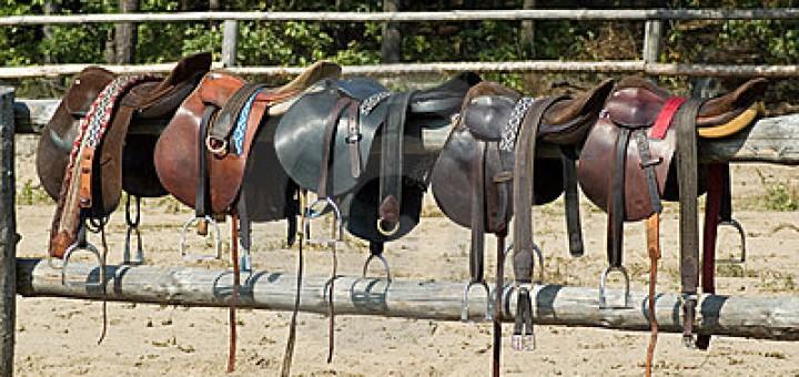 monturas-del-caballo-6456126