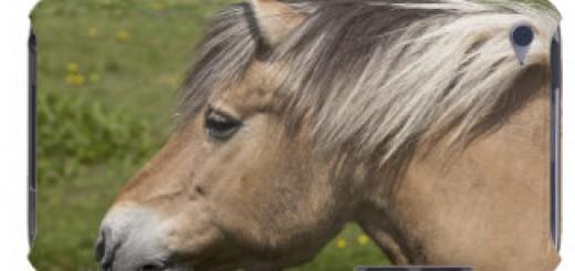 caballo_noruego_del_fiordo_ipod_touch_carcasa-rb7cca3eda7e745a3bb990a7b15c14b7d_a46qr_8byvr_324